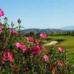 Santaluz Black Mountain Ranch San Diego5.jpg