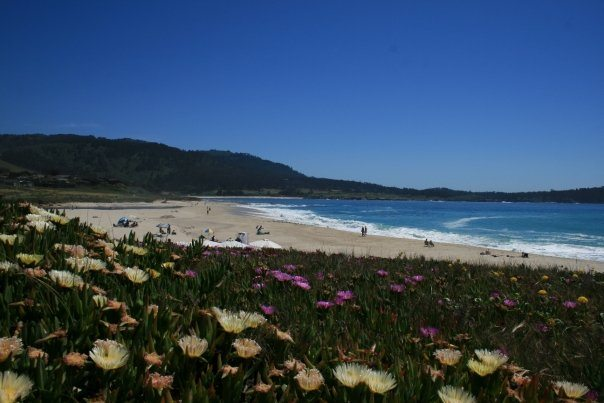 Carmel-By-The-Sea in Monterey county California